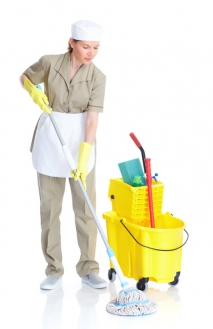 Getting The Right Home Cleaning With The Help Of A Simple Dry Cloth