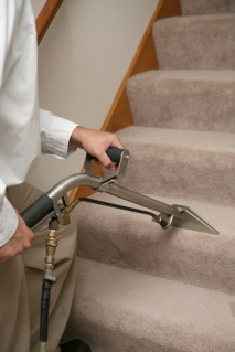 Different Ways To Clean Your Carpets